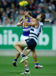 AFL 2014 Rd 04 - Geelong v West Coast