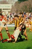 VFL 1970's - Hawthorn v South Melbourne