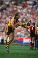 VFL 1980's - Hawthorn v Essendon