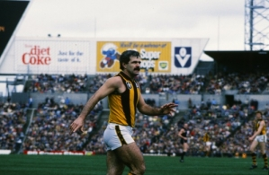 VFL 1985 Grand Final - Essendon v Hawthorn