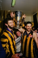 1986 VFL Grand Final - Hawthorn v Carlton