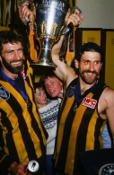 VFL 1986 Grand Final - Hawthorn v Carlton