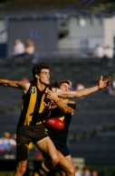 VFL 1986 - Hawthorn v Richmond