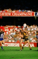 VFL 1986 - North Melbourne v Hawthorn