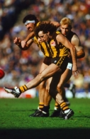 VFL 1987 Grand Final - Carlton v Hawthorn