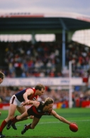 VFL 1988 - Essendon v Melbourne