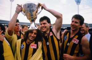 1988 AFL Grand Final - Hawthorn v Melbourne