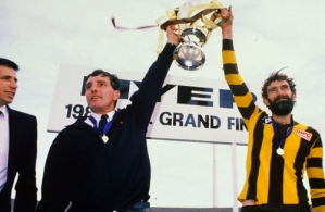1988 VFL Grand Final - Hawthorn v Melbourne