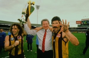 VFL 1988 Grand Final - Hawthorn v Melbourne