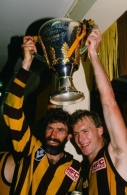 1989 VFL Grand Final - Hawthorn v Geelong