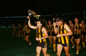 AFL 1991 Fosters Cup Grand Final - Hawthorn v North Melbourne