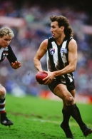 AFL 1991 Round 19 - Collingwood Magpies