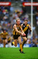 AFL 1991 Round 18 - Hawthorn v Richmond