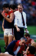 AFL 1991 1st Elimination Final - Melbourne v Essendon