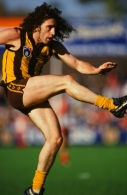 1991 AFL 2nd Semi Final Final - Hawthorn v West Coast