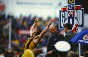 AFL 1991 Grand Final - Hawthorn v West Coast