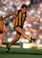 AFL 1992 Match - Hawthron v Geelong