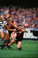 AFL 1994 Round 10 - Essendon v Geelong
