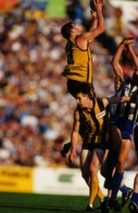 AFL 1994 2nd Qualifying Final - North Melbourne v Hawthorn