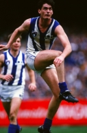 AFL 1994 1st Preliminary Final - North Melbourne v Geelong