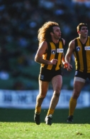 AFL 1994 Round 18 - North Melbourne v Hawthorn