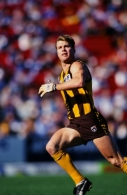 AFL 1995 Round 21 - Hawthorn v North Melbourne
