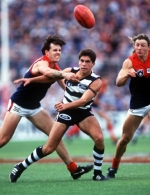 AFL 1995 Rd 17 - Geelong v Melbourne