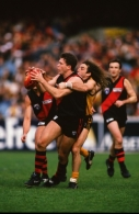 AFL 1997 Round 11 - Hawthorn v Essendon