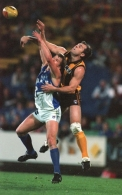 AFL 1997 Rd 6 - Hawthorn v North Melbourne