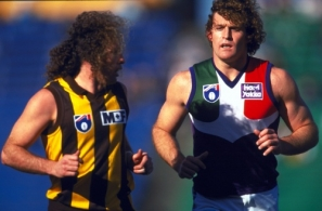 AFL 1997 Rd 17 - Hawthorn v Fremantle