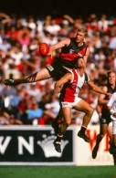 AFL 1998 Round 2 - Essendon v St Kilda