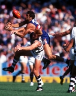 AFL 1999 Rd 2 - Western Bulldogs v Geelong