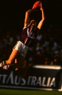 AFL 1999 Round 20 - Brisbane v Fremantle