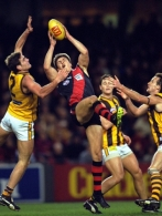 AFL 2000 Rd 19 - Essendon v Hawthorn