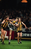 AFL 2000 1st Elimination Final - Geelong v Hawthorn