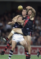 AFL 2001 Ansett Cup Match - Essendon v Geelong