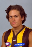 AFL 2001 Media - Hawthorn Team Portrait