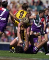 AFL 2001 Rd 3 - Fremantle v Hawthorn