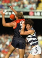 AFL 2001 Rd 3 - Melbourne v Geelong