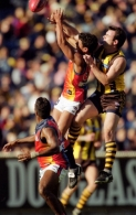 AFL 2001 Rd 8 - Hawthorn v West Coast