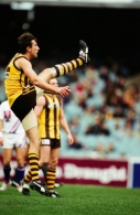 AFL 2001 Round 8 - Hawthorn v West Coast