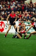 AFL 2001 Round 11 - Melbourne v Collingwood