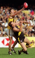 AFL 2001 Rd 14 - Richmond v Hawthorn