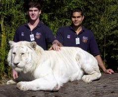 AFL 2001 Media - Brisbane Lions Visit to Dreamworld