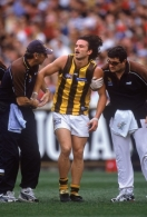 AFL 2001 1st Preliminary Final - Essendon v Hawthorn