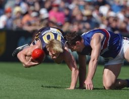 AFL 2002 Rd 3 - West Coast v Western Bulldogs