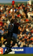 AFL 2002 Rd 10 - Geelong v Melbourne