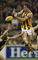 AFL 2002 Rd 20 - Richmond v Hawthorn