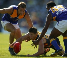 AFL 2003 Rd 4 - Adelaide v West Coast