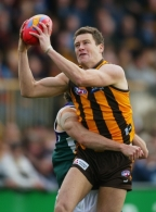 AFL 2003 Rd 13 - Hawthorn v Fremantle